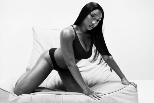 Megan Thee Stallion secured a Calvin Klein ad, and more news you missed