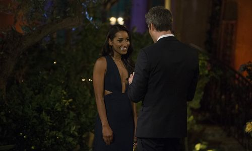 Seinne Fleming Steals the Spotlight on 'The Bachelor' -and Fans Think She's Too Good for Arie Luyendyk Jr