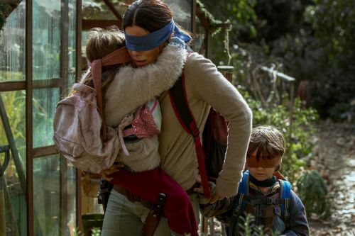 Netflix to Remove Real-Life Train Crash Scene From 'Bird Box'