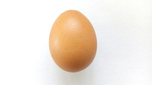 The World Record Instagram Egg Turned Out to Be a Mental Health