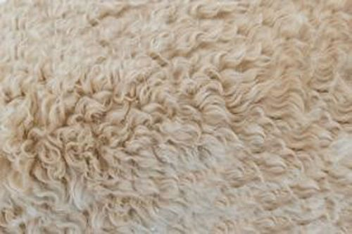 Innovative & eco-friendly insulation options for your home