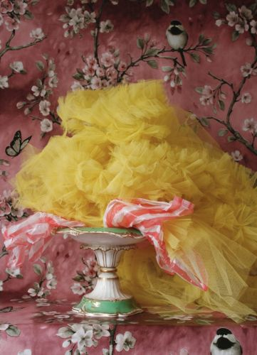 Photographs of Molly Goddard's Tulle Creations, Taken by Her Mother
