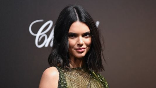 Kendall Jenner Frees the Nipple in a See-Through Dress at the Cannes Film Festival
