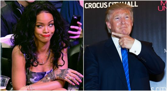 Phone Glitch Switches Rihanna and Donald Trump's Twitter Bios and It's the Best