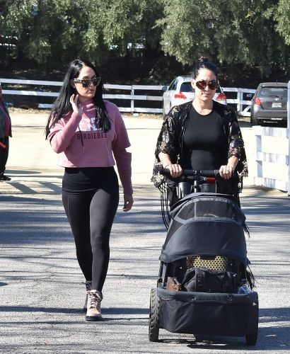 Pregnant Twin Sisters Nikki and Brie Bella Take Little Birdie to the Farmer's Market in Calabasas