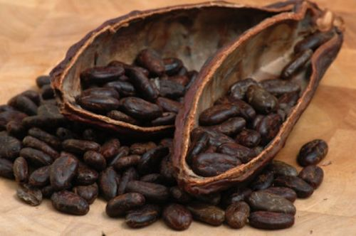 Superfood Suggestions: 5 Benefits Of Raw Organic Cacao