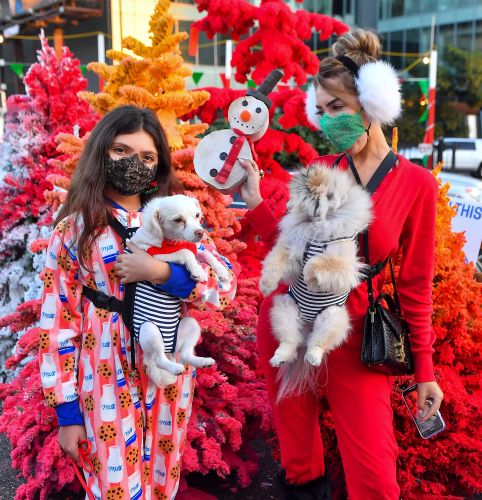 Farrah Abraham and Daughter Sophia Wear Cute Onesies While Christmas Tree Shopping