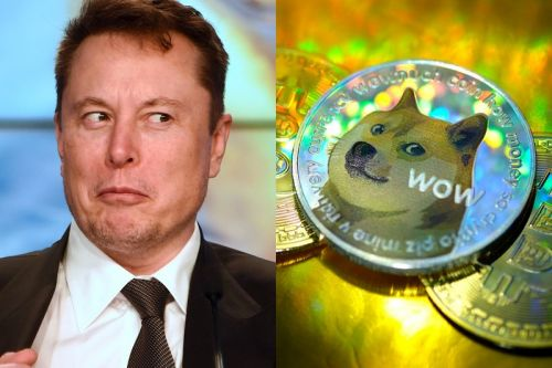 Dogecoin Developers Reveal Elon Musk Has Been Working With Them Since 2019