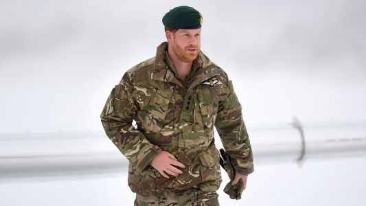 Sorry, Meghan Markle! Prince Harry Spent His Valentine's Day with the Royal Marines - See Pics