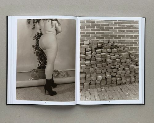 """""""It's an Encyclopedia of Life"""": An Ironic Look at Photographic Tropes"""