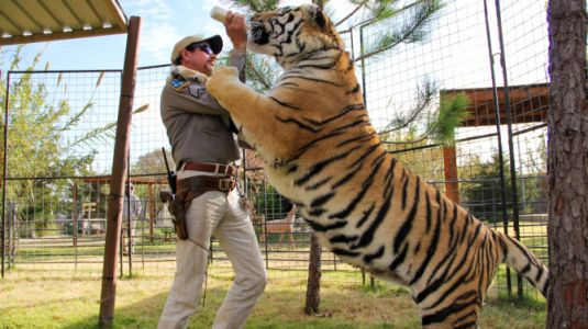 Tiger King's Joe Exotic Has a Wild Excuse For Why He Killed 5 of His Big Cats