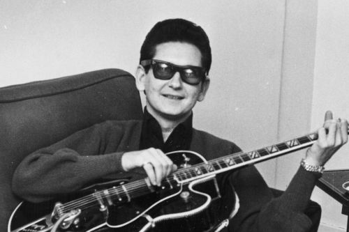 Roy Orbison's sons sue over hologram debacle