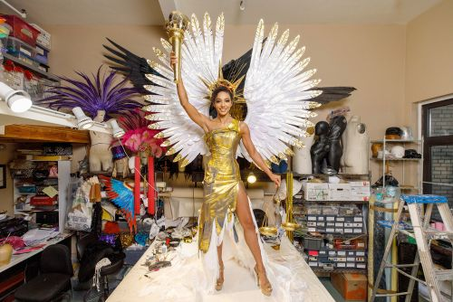 Miss USA Cheslie Kryst reveals national costume for Miss Universe