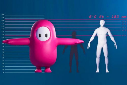 'Fall Guys' Developers Have Revealed the Character's Anatomy