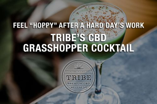 """Feel """"Hoppy"""" After A Hard Day's Work With Tribe's CBD Grasshopper Cocktail"""